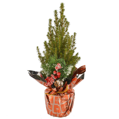 Коника в фольге с ягодами и шишкой арт. 20715